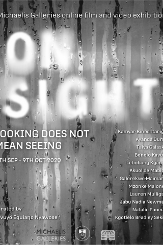 Michaelis Galleries online film & video exhibition on sight: looking does not mean seeing